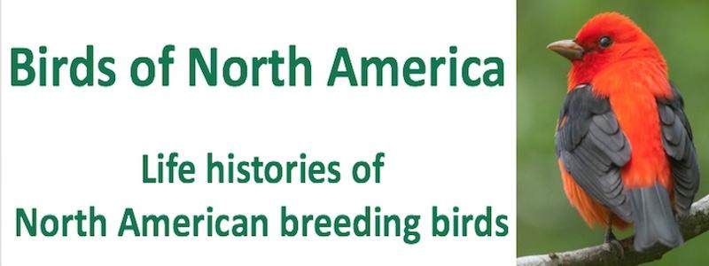 Birds of North America - Life histories of North American breeding birds