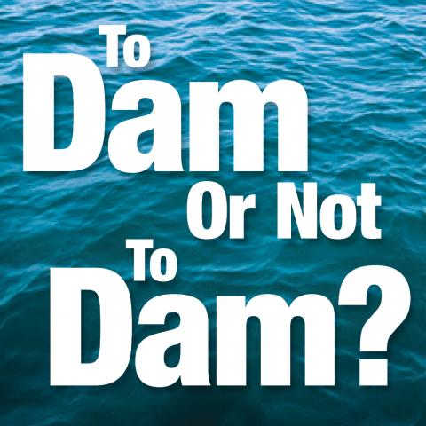 To Dam Or Not To Dam?